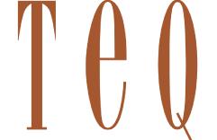 Logo-TEQ